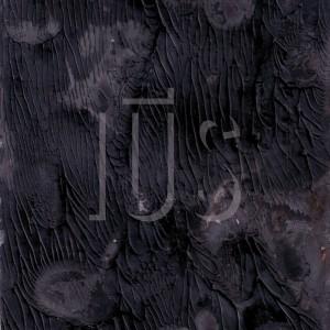 copertina