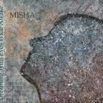 Misha Steinhauer Cover